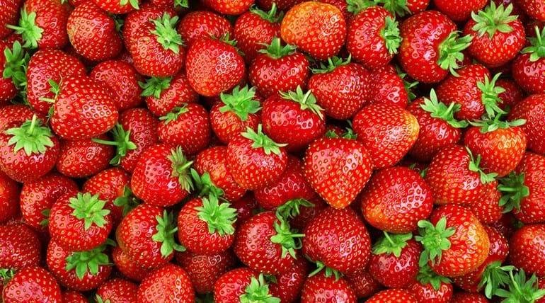 Pourquoi la fraise est un faux-fruit ?